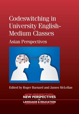 Codeswitching in University English-Medium Classes (BOK)