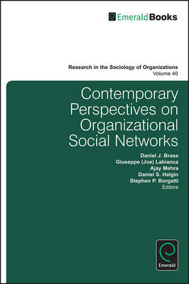 Contemporary Perspectives on Organizational Social Networks (BOK)