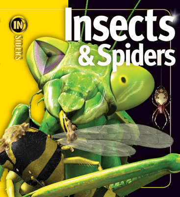 Insects and Spiders (BOK)