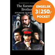 Produktbilde for The Karamazov Brothers (BOK)