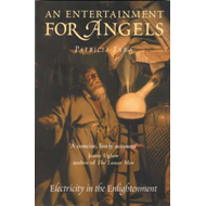 An Entertainment for Angels: Electricity in the Enlightenment (BOK)