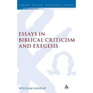 Essays in Biblical Criticism and Exegesis (BOK)