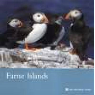 Farne Islands (BOK)