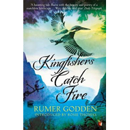 Kingfishers Catch Fire (BOK)