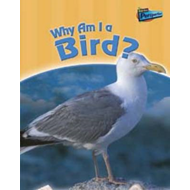 Why am I a Bird? (BOK)