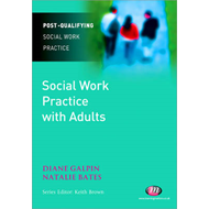 Social Work Practice with Adults (BOK)