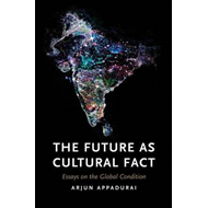 Future as Cultural Fact (BOK)