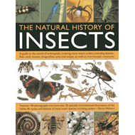 Natural History Of Insects (BOK)
