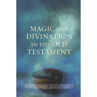 Magic and Divination in the Old Testament (BOK)