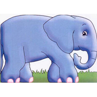 Elephant: Chunky Animals (BOK)