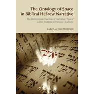 The Ontology of Space in Biblical Hebrew Narrative: The Determinate Function of Narrative Space With (BOK)