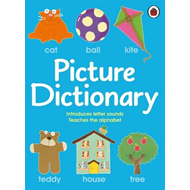 Picture Dictionary (BOK)