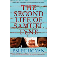 The Second Life of Samuel Tyne (BOK)
