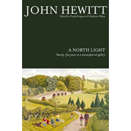 A North Light: Twenty-Five Years in a Municipal Art Gallery (BOK)