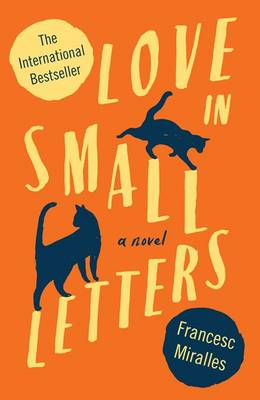 Love in Small Letters (BOK)