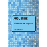 Augustine: A Guide for the Perplexed (BOK)