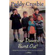 Your Dinner's Poured Out!: Memoirs of a Dublin That Has Disappeared (BOK)