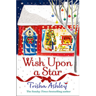 Wish Upon a Star (BOK)