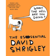 What the Hell are You Doing?: The Essential David Shrigley (BOK)