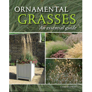 Ornamental Grasses: An Essential Guide (BOK)