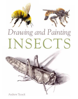Drawing and Painting Insects (BOK)
