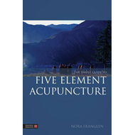 The Simple Guide to Five Element Acupuncture (BOK)