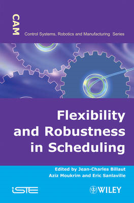 Flexibility and Robustness in Scheduling (BOK)