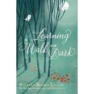 Learning to Walk in the Dark (BOK)