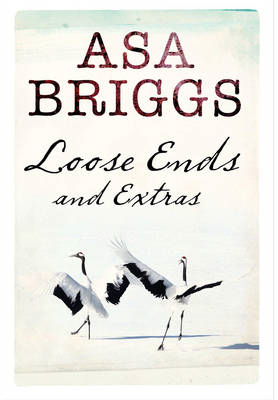 Loose Ends and Extras (BOK)