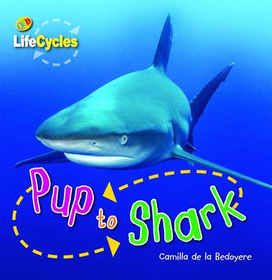 Lifecycles: Pup to Shark (BOK)