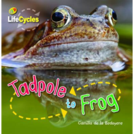 Lifecycles: Tadpole to Frog (BOK)