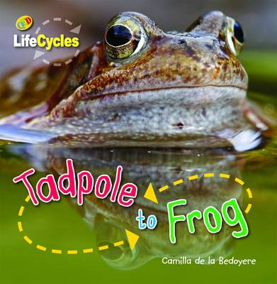 Tadpole to Frog (BOK)