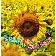 Seed to Sunflower (BOK)