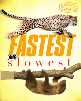 Fastest and Slowest (BOK)