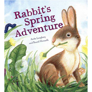 Rabbit's Spring Adventure (BOK)