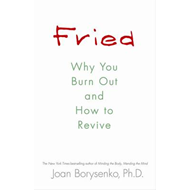 Fried: Why You Burn Out and How to Revive (BOK)
