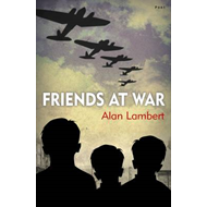 Friends at War (BOK)