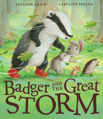 Badger and the Great Storm (BOK)