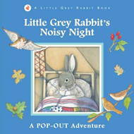 Little Grey Rabbit's Noisy Night (BOK)