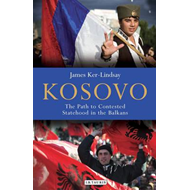 Kosovo: The Path to Contested Statehood in the Balkans (BOK)
