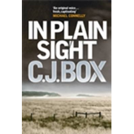 In Plain Sight (BOK)