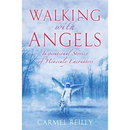 Walking with Angels: Inspirational Stories of Heavenly Encounters (BOK)
