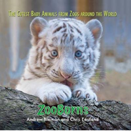 ZooBorns: The Cutest Baby Animals from Zoos Around the World! (BOK)