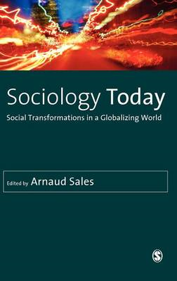 Sociology Today: Social Transformations in a Globalizing World (BOK)