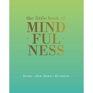 Little Book of Mindfulness (BOK)