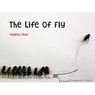 The Life of Fly (BOK)