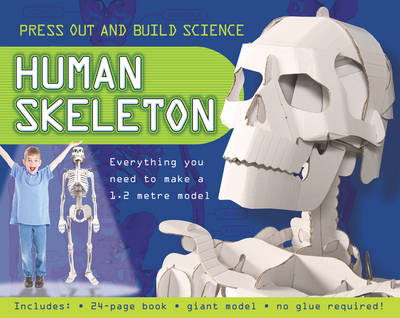 Press Out and Build Human Skeleton (BOK)