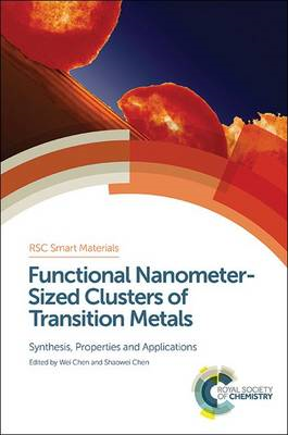 Functional Nanometer-Sized Clusters of Transition Metals: Synthesis, Properties and Applications (BOK)