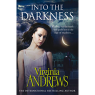 Into the Darkness (BOK)