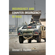 Insurgency and Counter-Insurgency in Iraq (BOK)